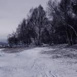 Premade bg - Snowy Times