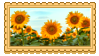 sunflowers by glittersludge