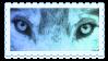 wolf eyes by glittersludge