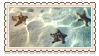 starfish by glittersludge