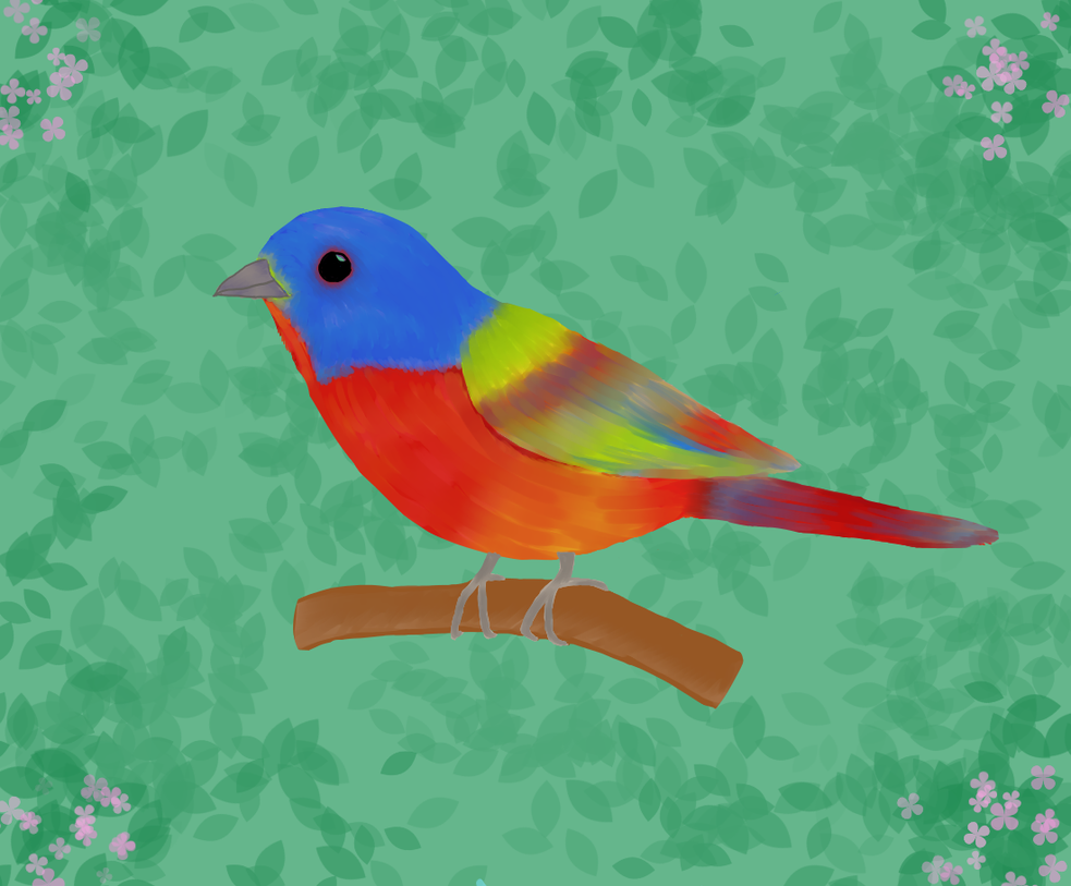 Male Painted Bunting Drawing by Dethous
