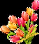 Bouquet By Kmygraphic-d8vp1hr by littleriverqueen