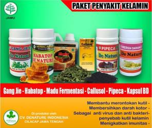 obat kutil kelamin herbal untuk pria dan wanita
