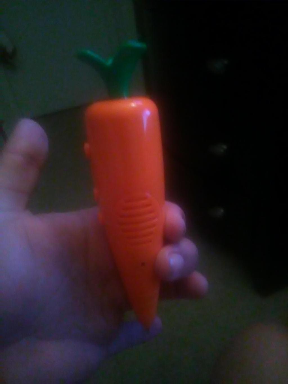 Judy's Carrot recorder pen by Juliusrabbito