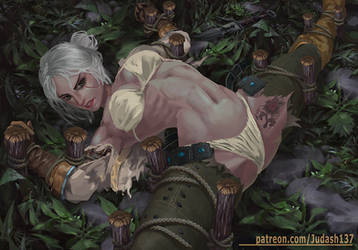 Ciri(Witcher 3)Trapped  NSFW by Huy137