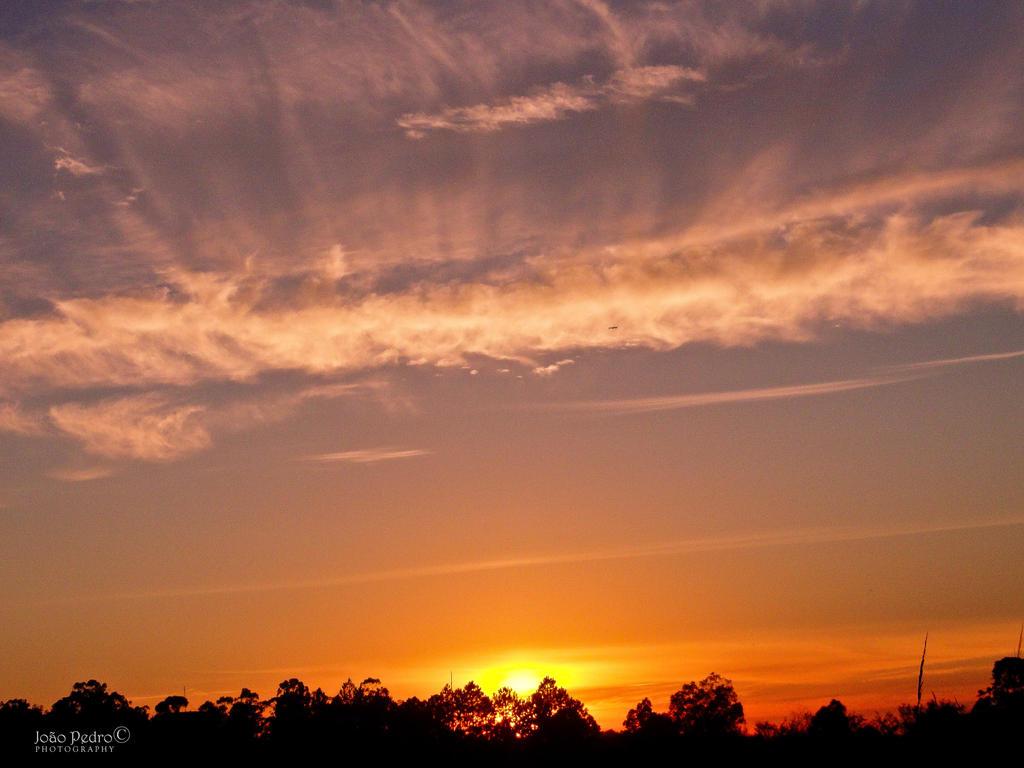 Morning Skies VII by John-Peter