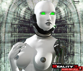 X-TC-Reality3 Image 2013 Small by crom131