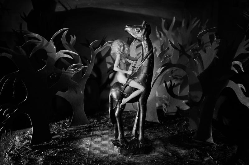 Venus Safari by Feebrile