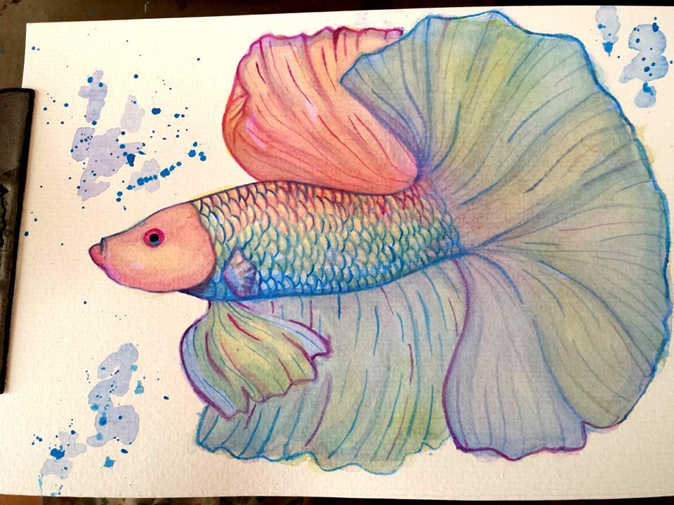 Beta Fish by brittypikiruxa