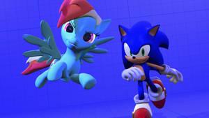 Rainbow Dash and Sonic The Hedgehog
