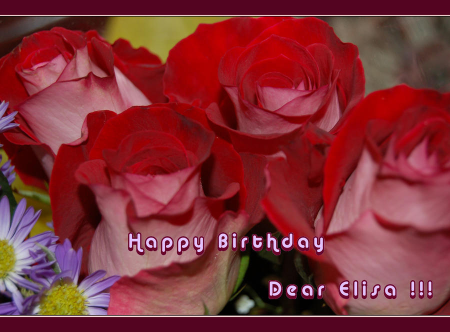 Happy Birthday Dear Elisa By ForgivenDreamSoul On DeviantArt
