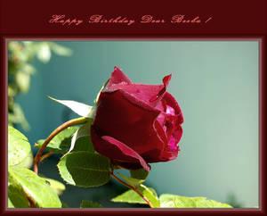 Happy Birthday Dear Beeba