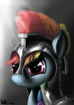 Commander Rainbow Dash