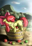 Applesleep