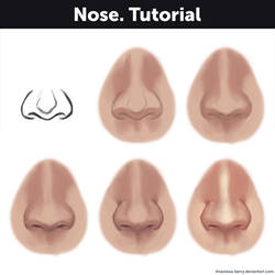 Nose. Tutorial