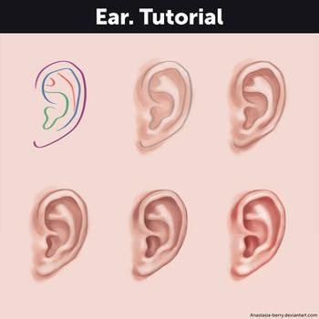 Ear. Tutorial