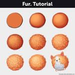 Fur. Tutorial