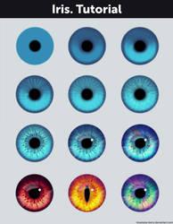 Iris. Tutorial + References