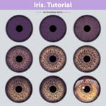 Iris. Tutorial