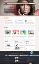 Portfolio | Responsive Business Theme