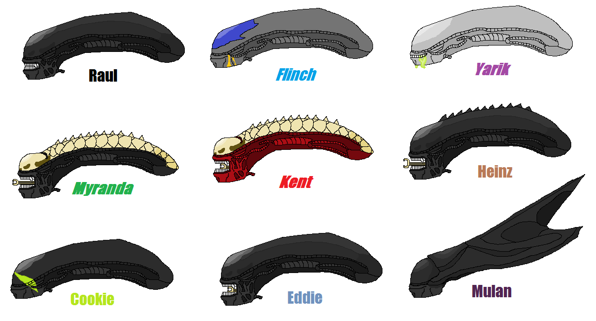 Xenomorph Vs Zerg Xenomorph Profile Pics by