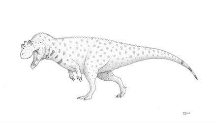 Ceratosaurus dentisulcatus by Ictonyx