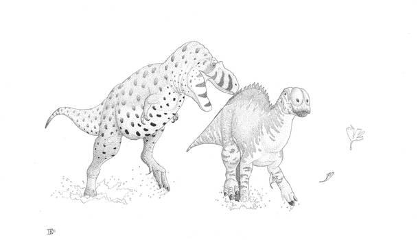 Daspletosaurus and Brachylophosaurus