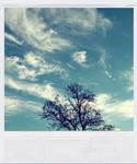summertime by Krapfen