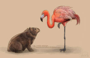 Wombat and Flamingo by rosiesinner