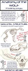 Anatomy of a Wolf - A Tutorial by rosiesinner