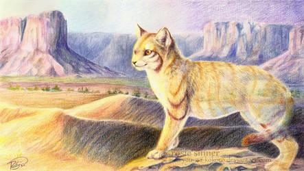 Desert Spirit by rosiesinner