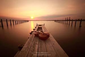 Cello Concert for nature