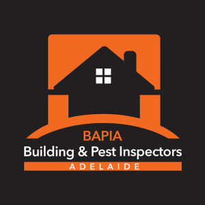 buildingandpest's Profile Picture