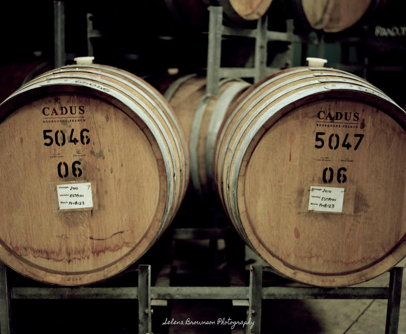 Wine Barrels by SelenaMarie