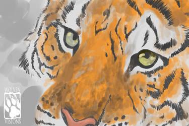 /. Tiger WIP /.