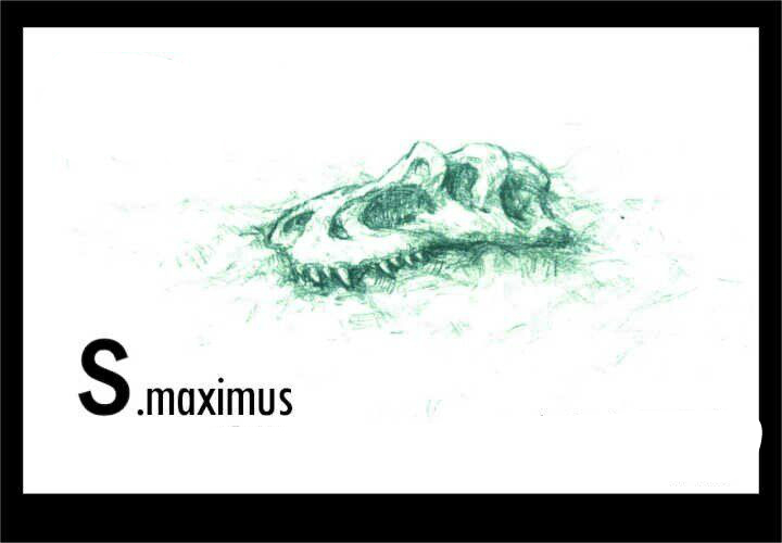 Saurophaganax skull by FinalGojiTTOR