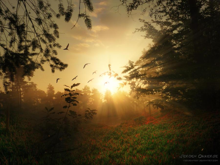 Sunrise by jeroenpaint