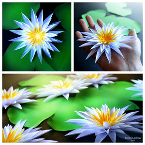 Paper Water Lilies