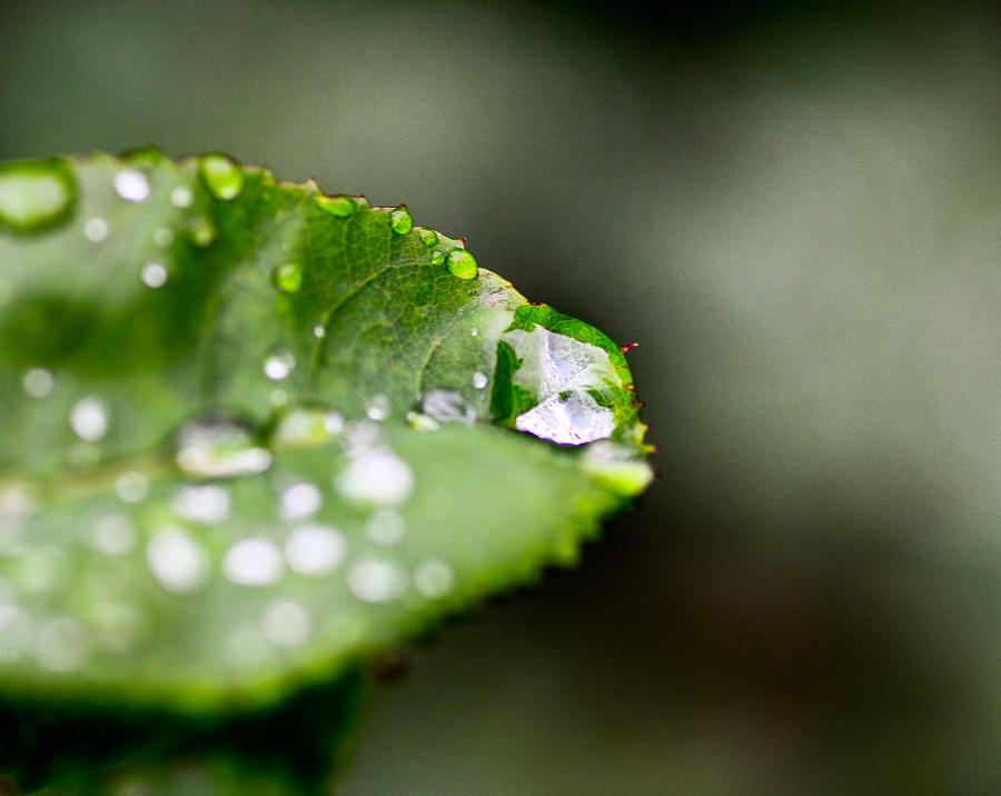 123 by rainman65
