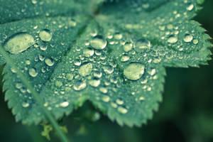 Droplets wiew by rainman65