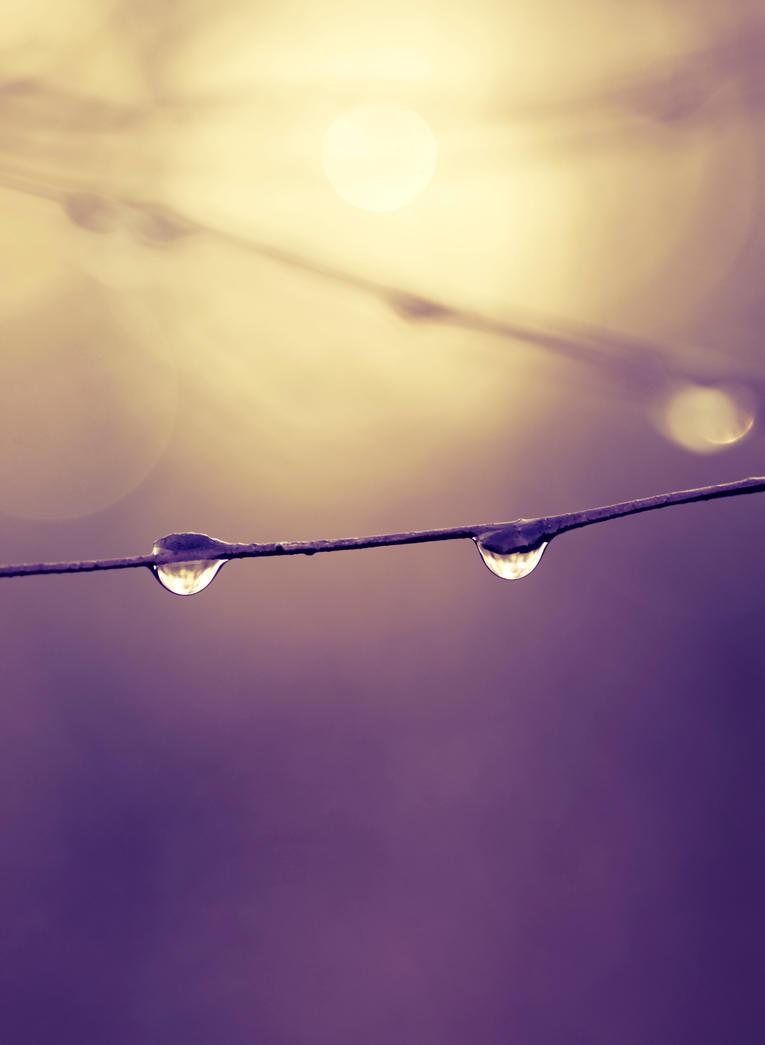Bright morning ,beatiful day by rainman65