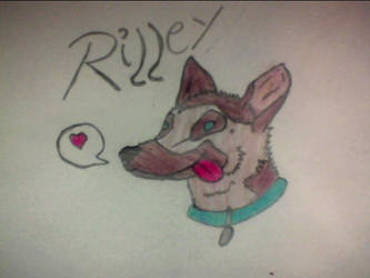 Riley by Mariannj