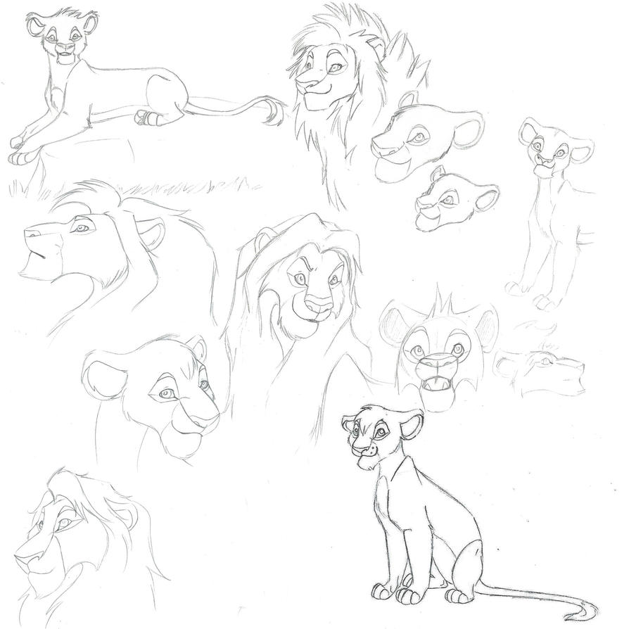 Lion Sketches by BlackCharizard006