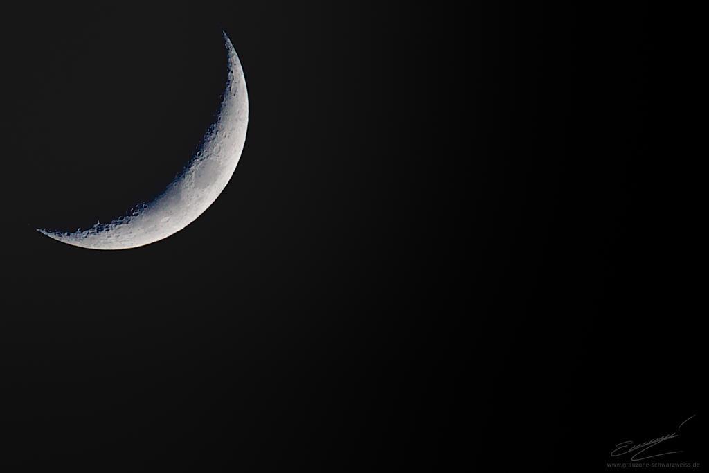 Luna by Ikarusthefirst