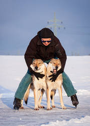 Ice Skating With Wolfdogs