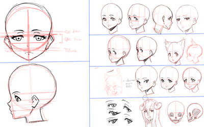 DarkLored's Practice Sheets: Head Proportions
