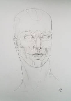 Study portrait