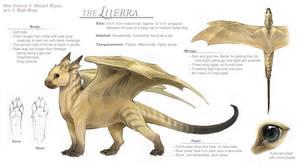 Liierra ref sheet