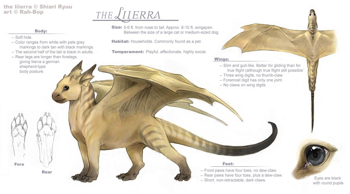 Liierra ref sheet by rah-bop