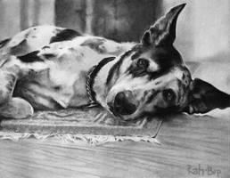 Hank in charcoal by rah-bop